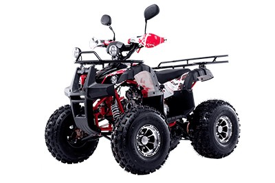 Квадроцикл WELS ATV Thunder 125 Люкс