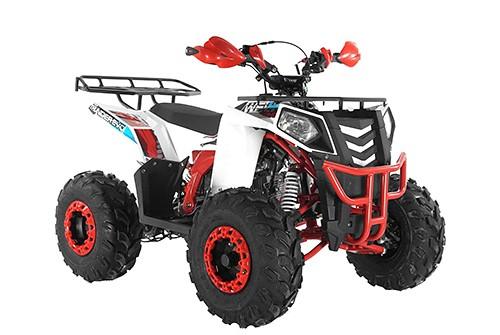 Квадроцикл WELS ATV Thunder 125 ево 2