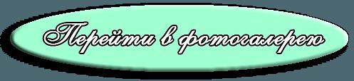 Болеро и накидки свадебные (прокат) - фото http://belayalebed.by/photos/f12430-bolero-palto-nakidki-svadebnye/