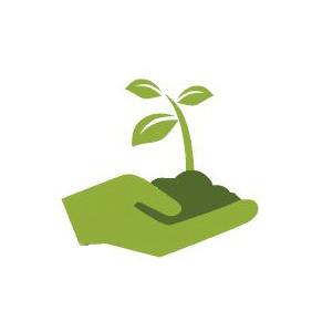 Интернет-магазин семян - фото pic_ae15d76f5219023_700x3000_1.jpg