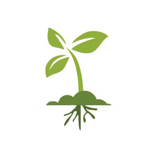 Интернет-магазин семян - фото pic_3e09e8ceb9b45fd_700x3000_1.jpg
