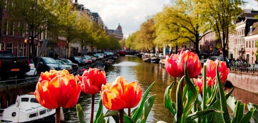 "Экскурсионный тур ""Германия-Голландия-Бельгия с посещением Парада цветов в парке «Кёкенхоф»"" - фото pic_08e01c3e9ca988e2d6be29abb3b42a52_1920x9000_1.jpg"