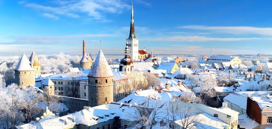 Путешествие в Лапландию к Санта Клаусу с посещением Арктического зоопарка! - фото pic_dfebe605093198a_1920x9000_1.jpg