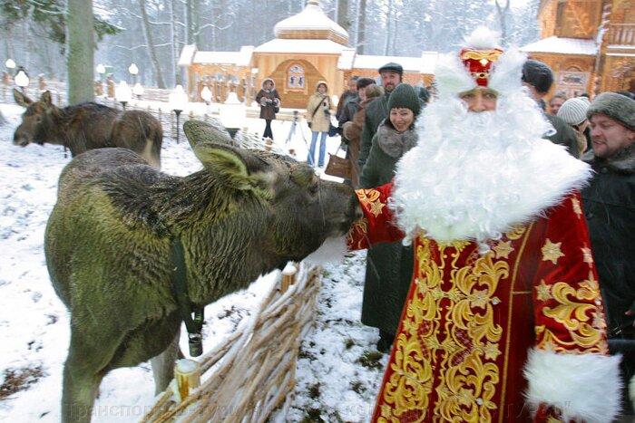 Новогодний тур в Беловежскую Пущу автобусом - фото pic_13db8c4082fea36_700x3000_1.jpg