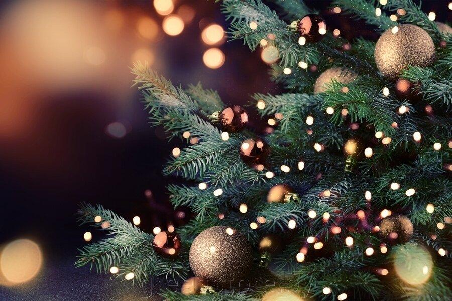 Режим работы в новогодние праздники - фото pic_fecd13846eeaf65d2fe66bc744f3aca7_1920x9000_1.jpg