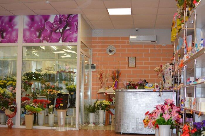 Наш магазин Цветы Успех в г.Сморгонь - фото pic_f19de416e92fe60_700x3000_1.jpg