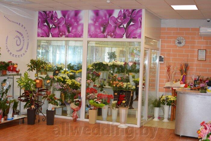 Наш магазин Цветы Успех в г.Сморгонь - фото pic_bda3774ea42cc01_700x3000_1.jpg