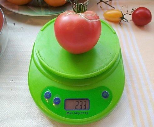 Весы кухонные электронные с чашей Feilite KE-1, нагрузка до 5 кг Зеленый корпус - фото pic_c17ea1c40ab293c_1920x9000_1.jpg