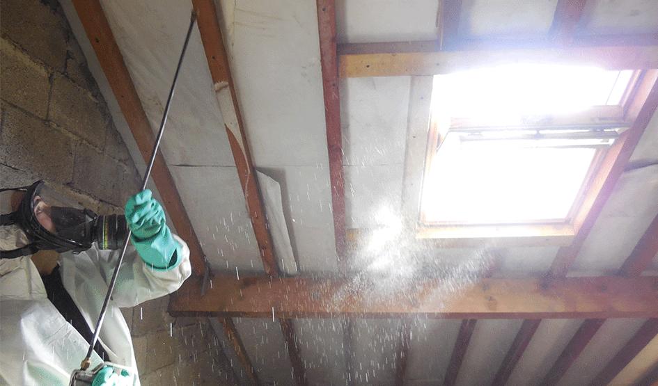 Система борьбы с насекомыми-вредителями и защиты древесины - фото pic_849492b09baf65b41a5de7625defc363_1920x9000_1.png