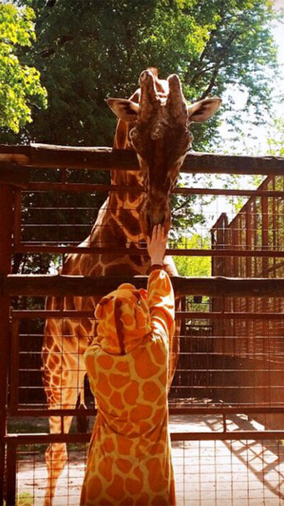 Жираф взрослый - фото srejWwKCoH4.jpg