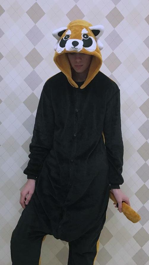 Кигуруми Енот взрослый - фото Screenshot_2019-06-20-10-43-38-427_com.instagram.android.png